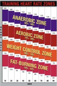 Training heart rate intensity zones example